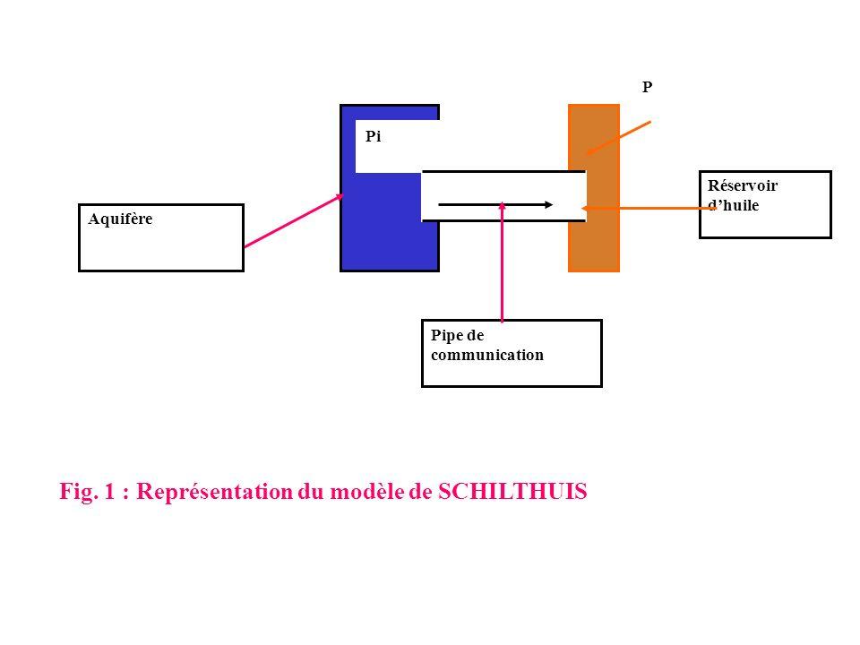 Fig. 1 : Représentation du modèle de SCHILTHUIS