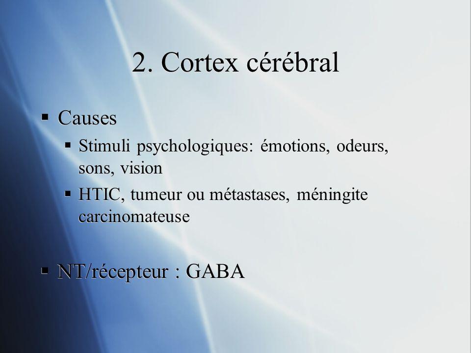 2. Cortex cérébral Causes NT/récepteur : GABA