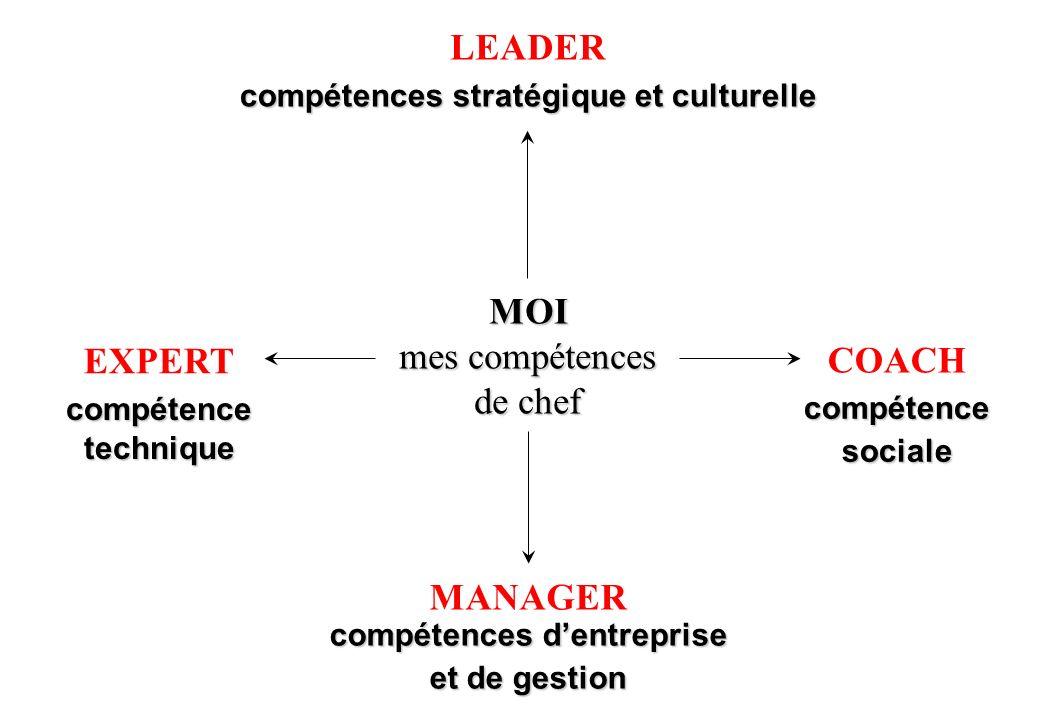 compétences stratégique et culturelle compétences d'entreprise