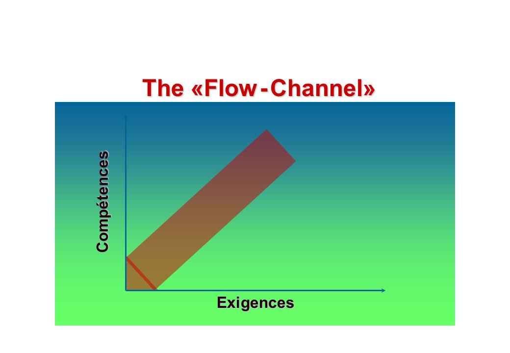 The «Flow - Channel» Compétences Exigences