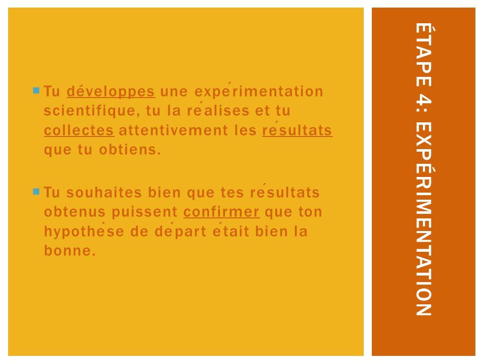 Étape 4: expérimentation