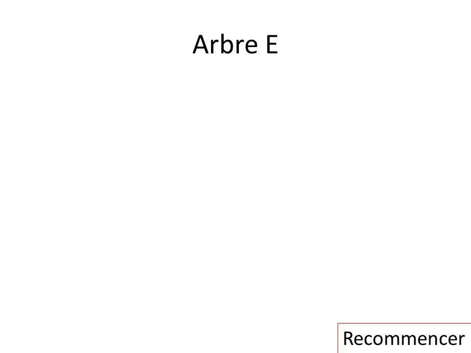 Arbre E Recommencer