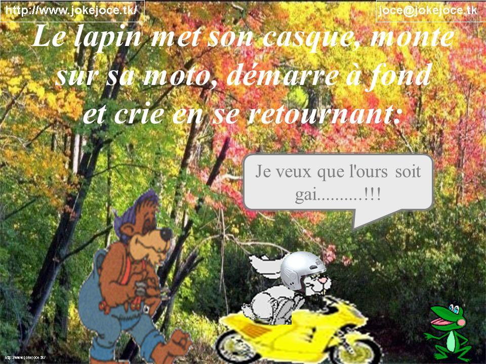 Le lapin met son casque, monte sur sa moto, démarre à fond
