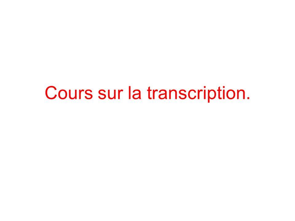 Cours sur la transcription.