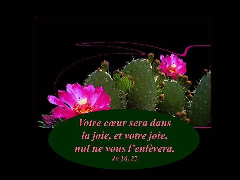 Votre cœur sera dans la joie, et votre joie, nul ne vous l'enlèvera