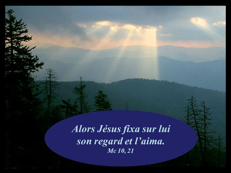 Alors Jésus fixa sur lui son regard et l'aima. Mc 10, 21