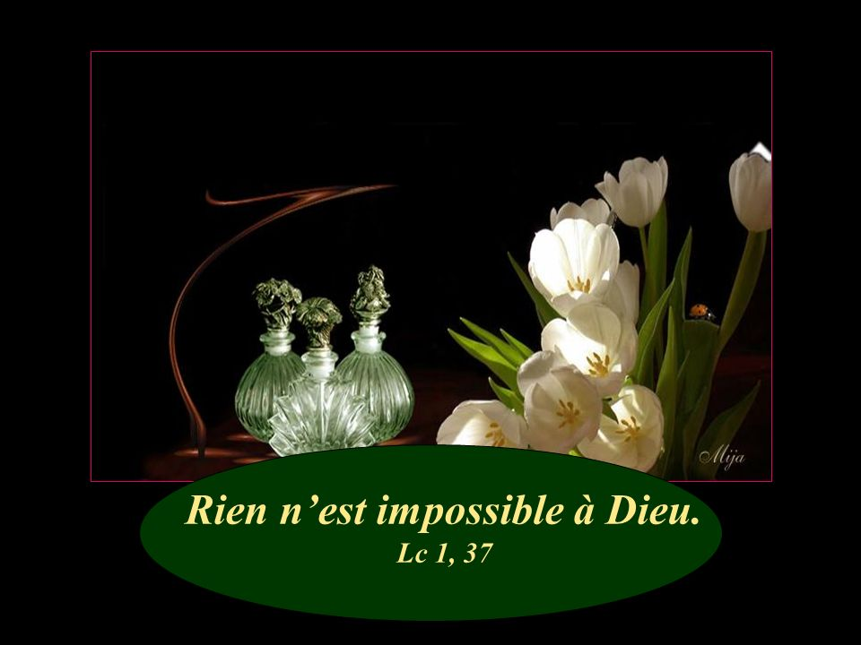 Rien n'est impossible à Dieu. Lc 1, 37