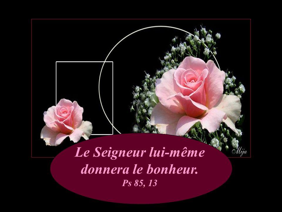 Le Seigneur lui-même donnera le bonheur. Ps 85, 13