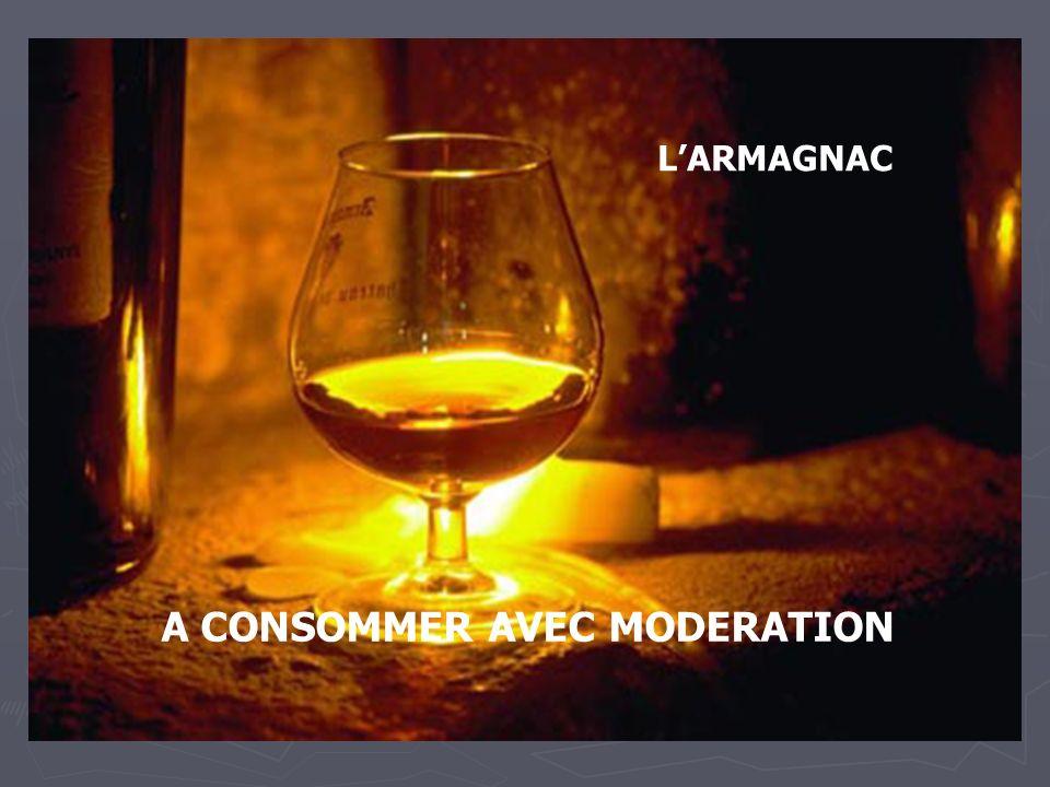 L'ARMAGNAC A CONSOMMER AVEC MODERATION
