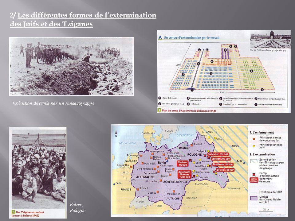 2/ Les différentes formes de l'extermination des Juifs et des Tziganes