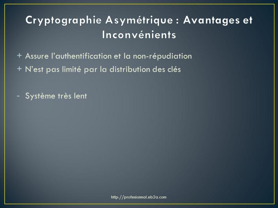 Cryptographie Asymétrique : Avantages et Inconvénients