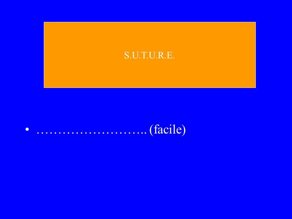 S.U.T.U.R.E. …………………….. (facile)