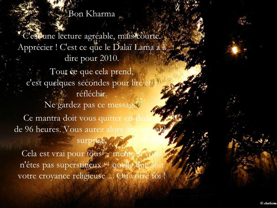 Bon Kharma C est une lecture agréable, mais courte. Apprécier