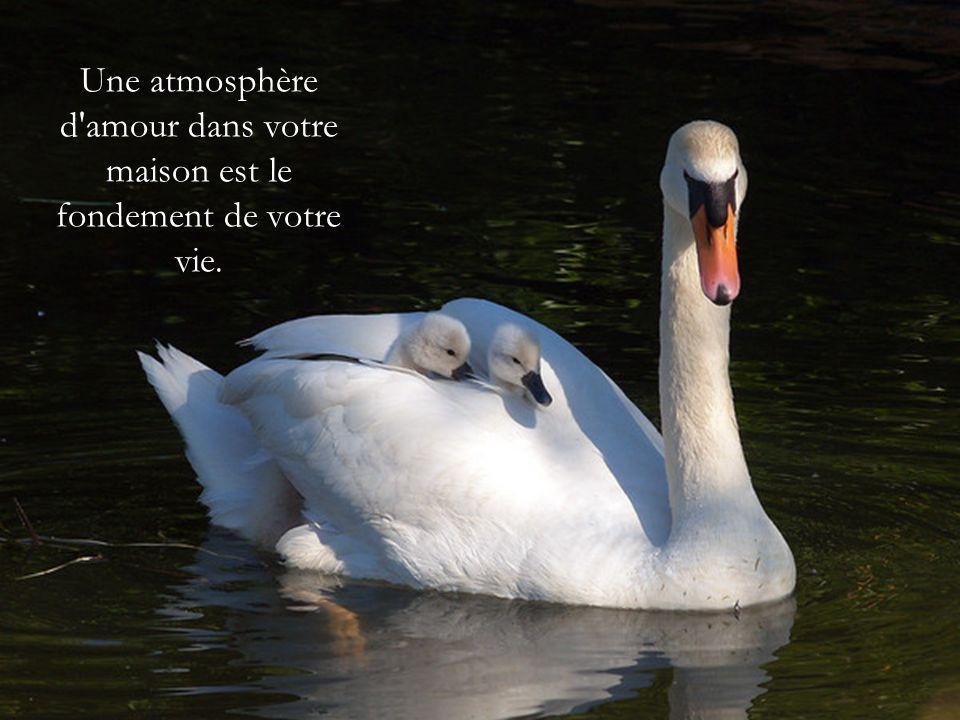 Une atmosphère d amour dans votre maison est le fondement de votre vie.