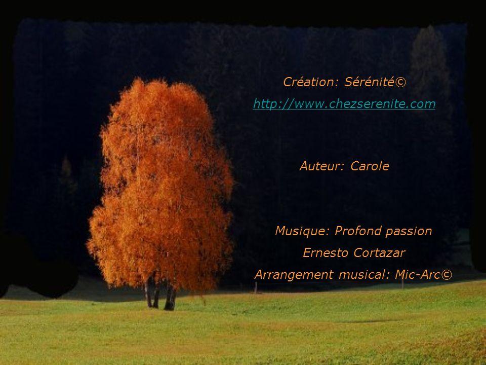 Musique: Profond passion Ernesto Cortazar