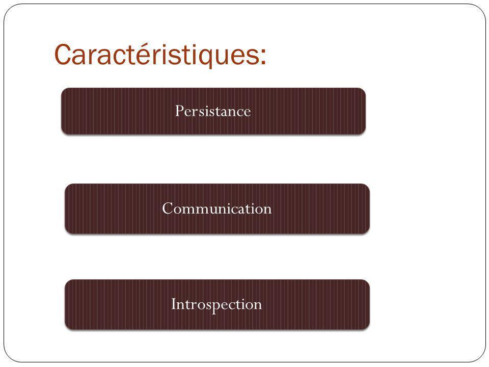 Caractéristiques: Persistance Communication Introspection