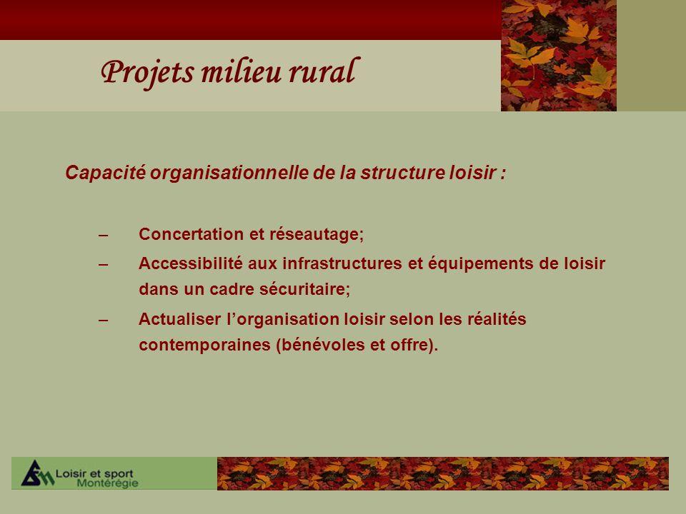 Capacité organisationnelle de la structure loisir :