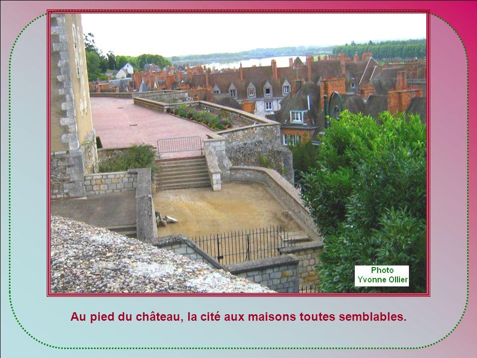 Au pied du château, la cité aux maisons toutes semblables.