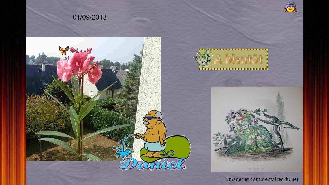 01/09/2013 images et commentaires du net