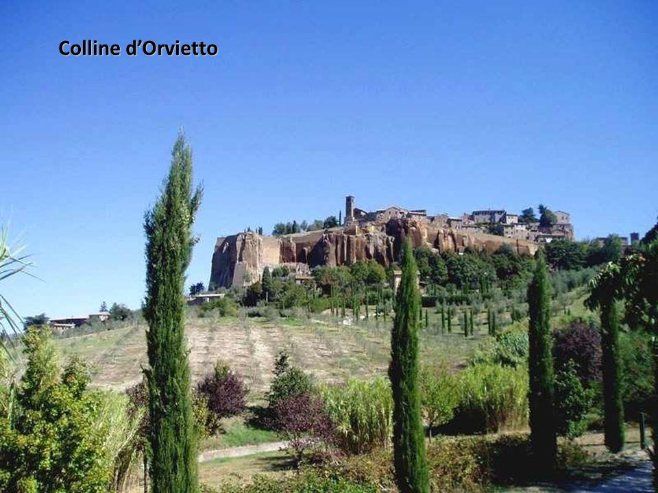 Colline d'Orvietto