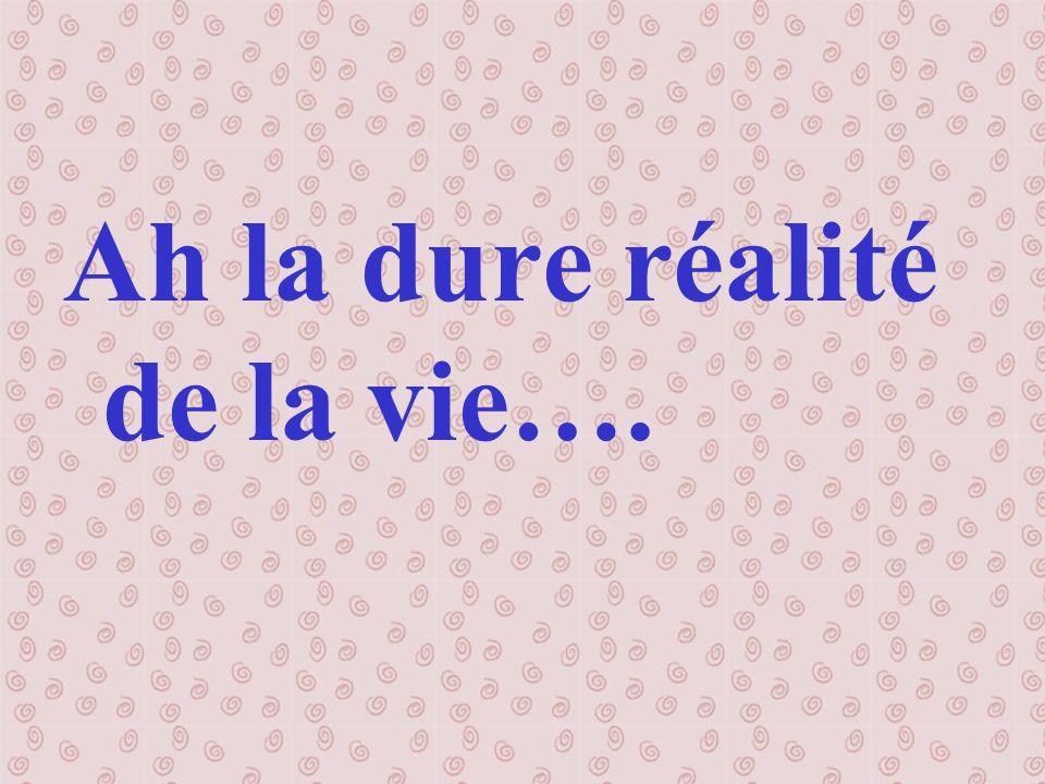 Ah la dure réalité de la vie….