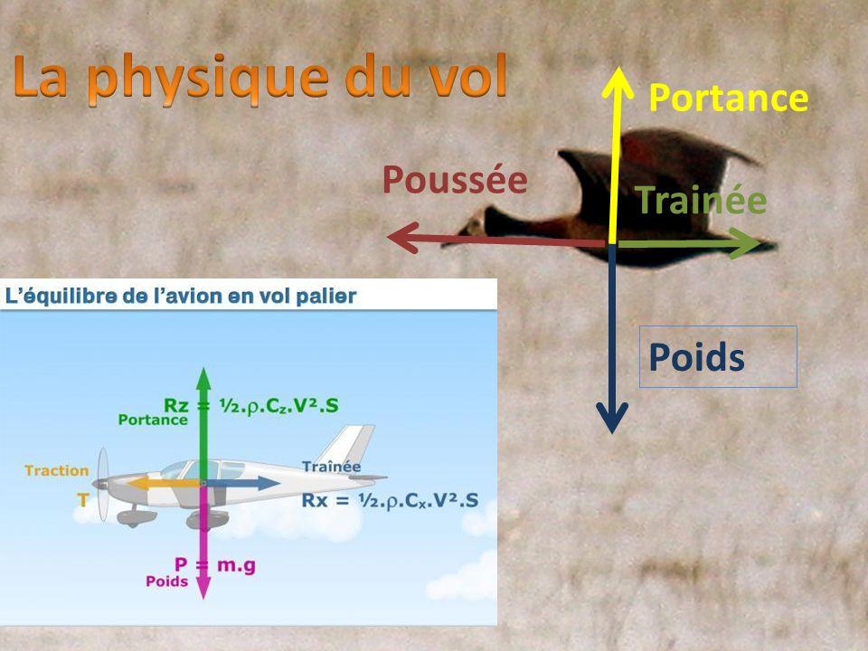 La physique du vol Portance Poussée Trainée Poids