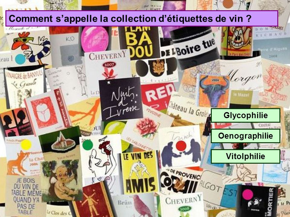 Comment s'appelle la collection d'étiquettes de vin
