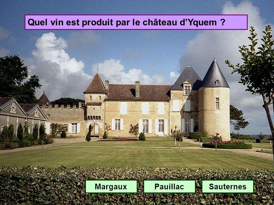 Quel vin est produit par le château d'Yquem