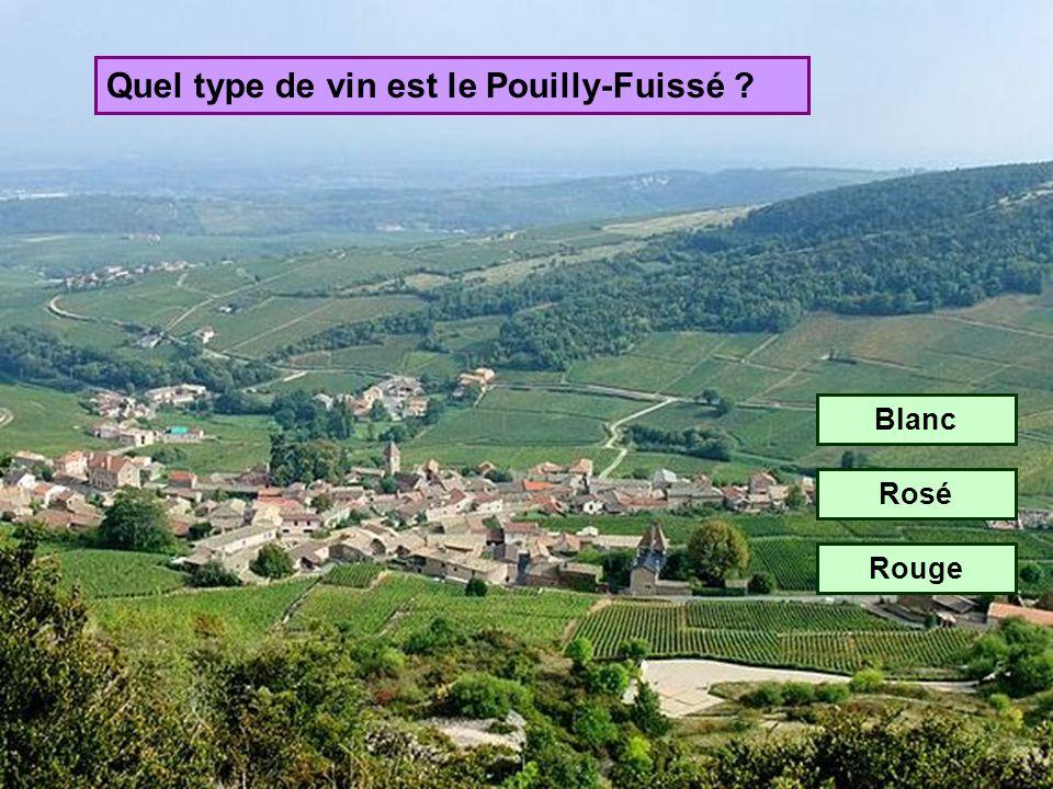 Quel type de vin est le Pouilly-Fuissé
