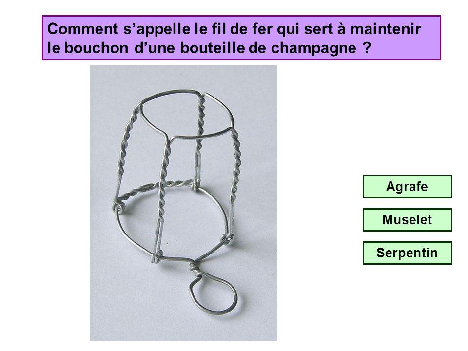 Comment s'appelle le fil de fer qui sert à maintenir le bouchon d'une bouteille de champagne