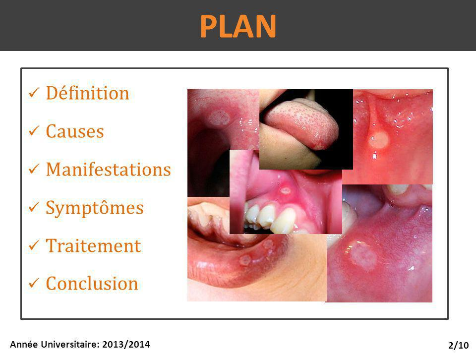PLAN Définition Causes Manifestations Symptômes Traitement Conclusion