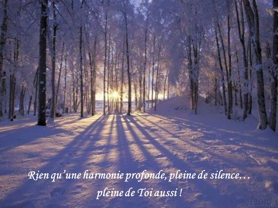 Rien qu'une harmonie profonde, pleine de silence…