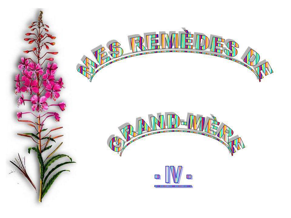 MES REMÈDES DE GRAND-MÈRE - IV -