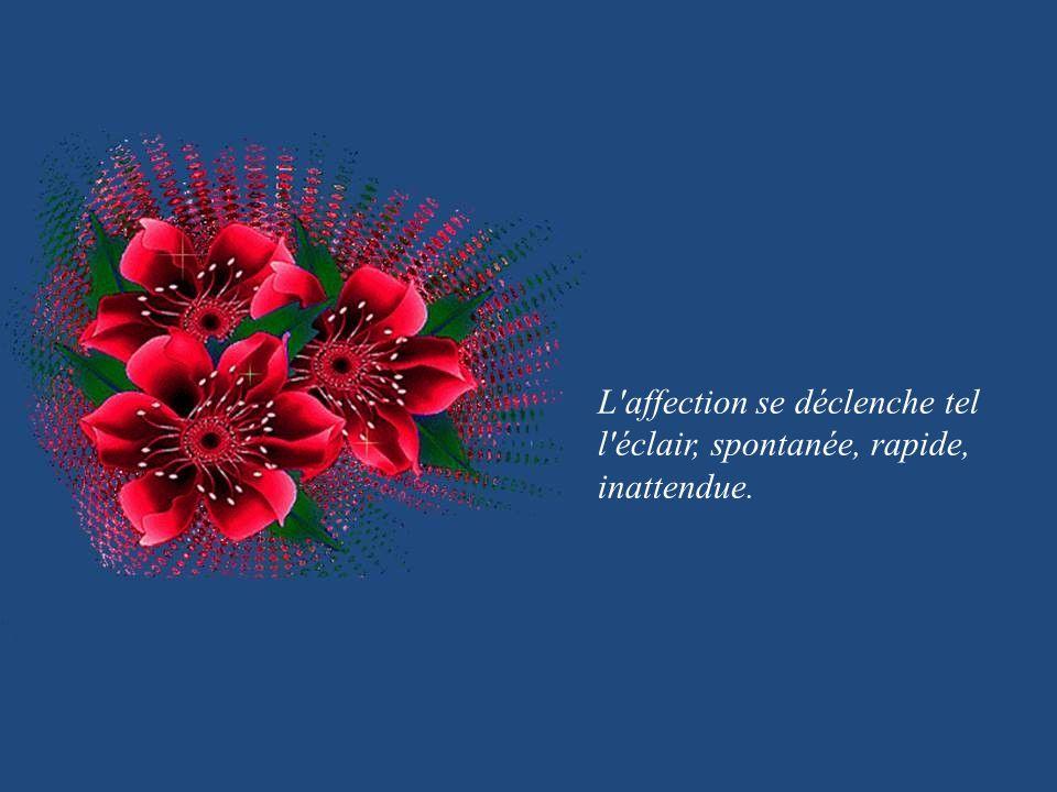 L affection se déclenche tel l éclair, spontanée, rapide, inattendue.