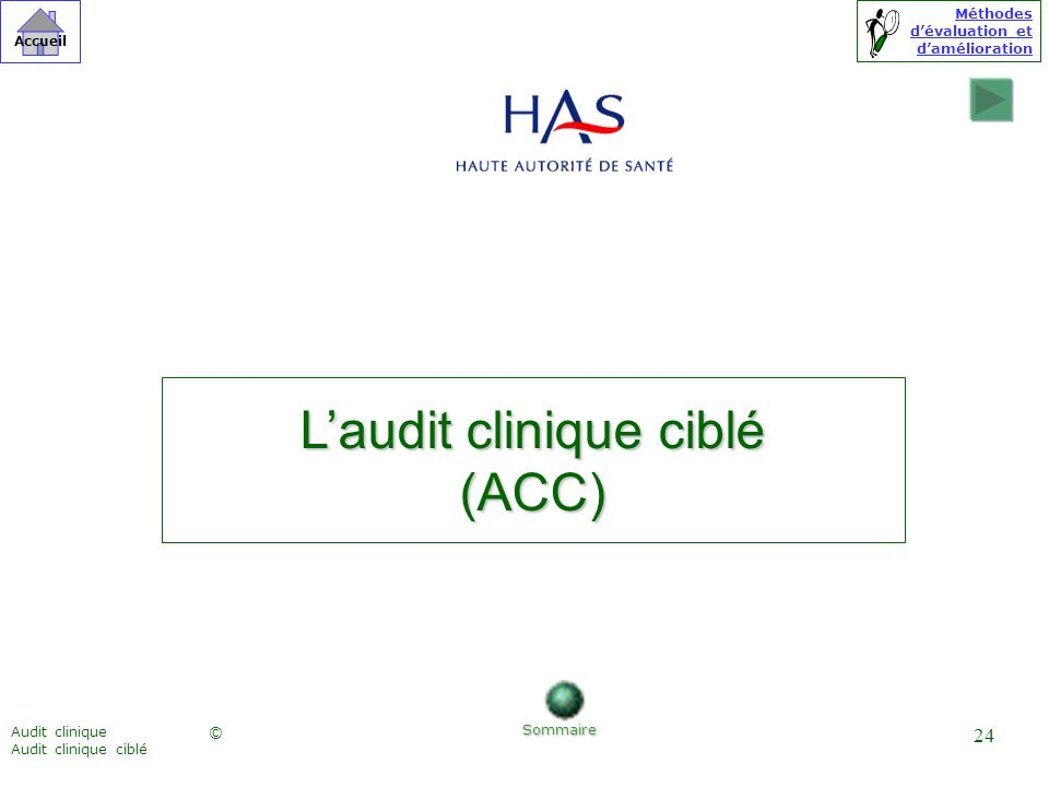 L'audit clinique ciblé
