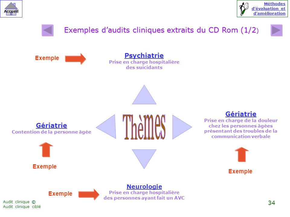 Exemples d'audits cliniques extraits du CD Rom (1/2)