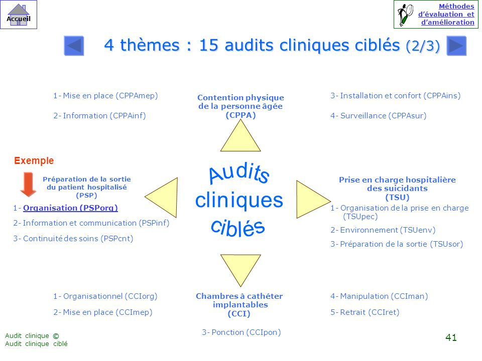 4 thèmes : 15 audits cliniques ciblés (2/3)