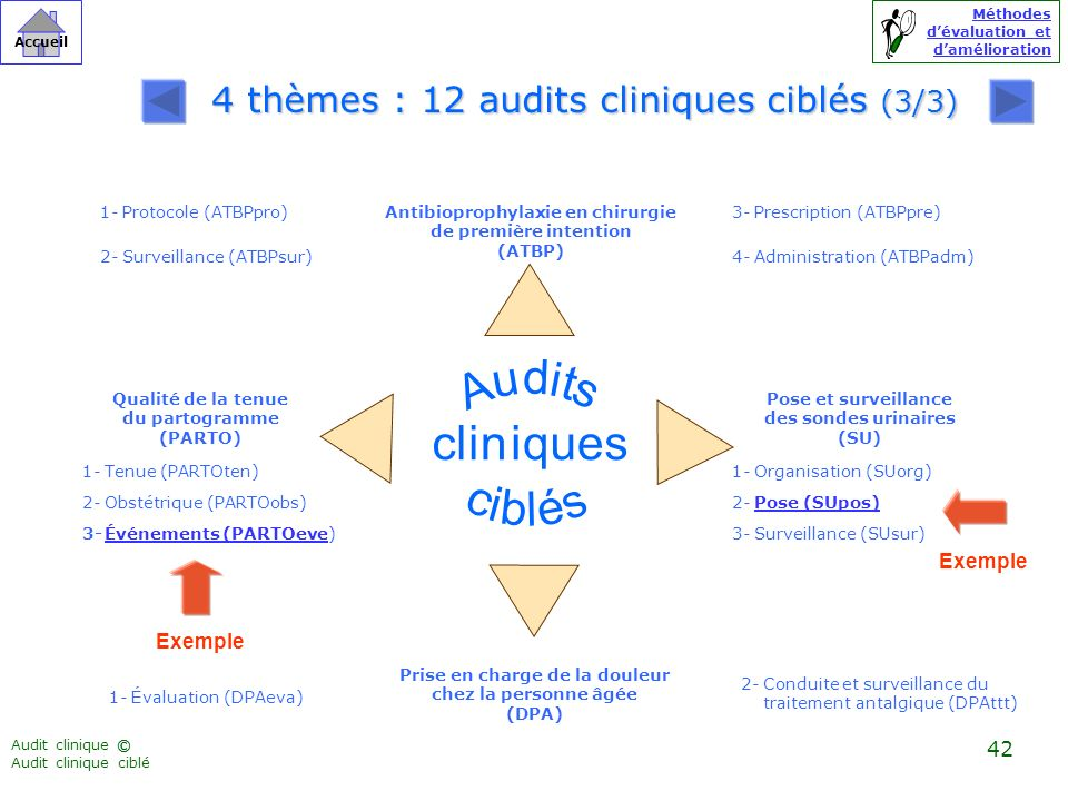 4 thèmes : 12 audits cliniques ciblés (3/3)