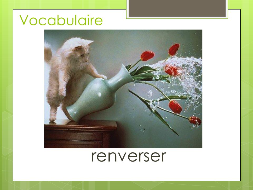 Vocabulaire renverser