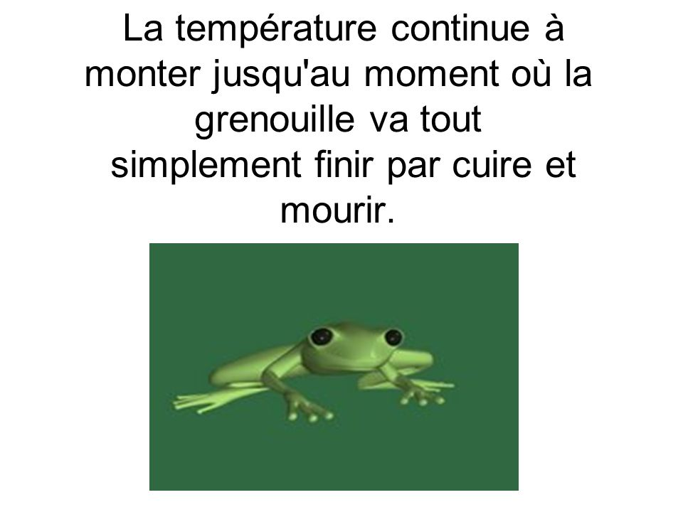 La température continue à monter jusqu au moment où la grenouille va tout simplement finir par cuire et mourir.