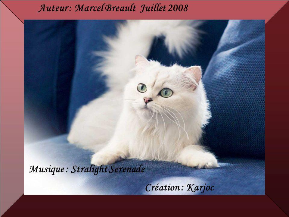 Auteur : Marcel Breault Juillet 2008