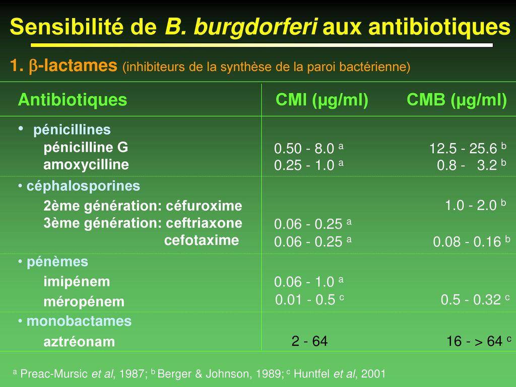 La maladie de Lyme : Physiopathologie et traitement actuel