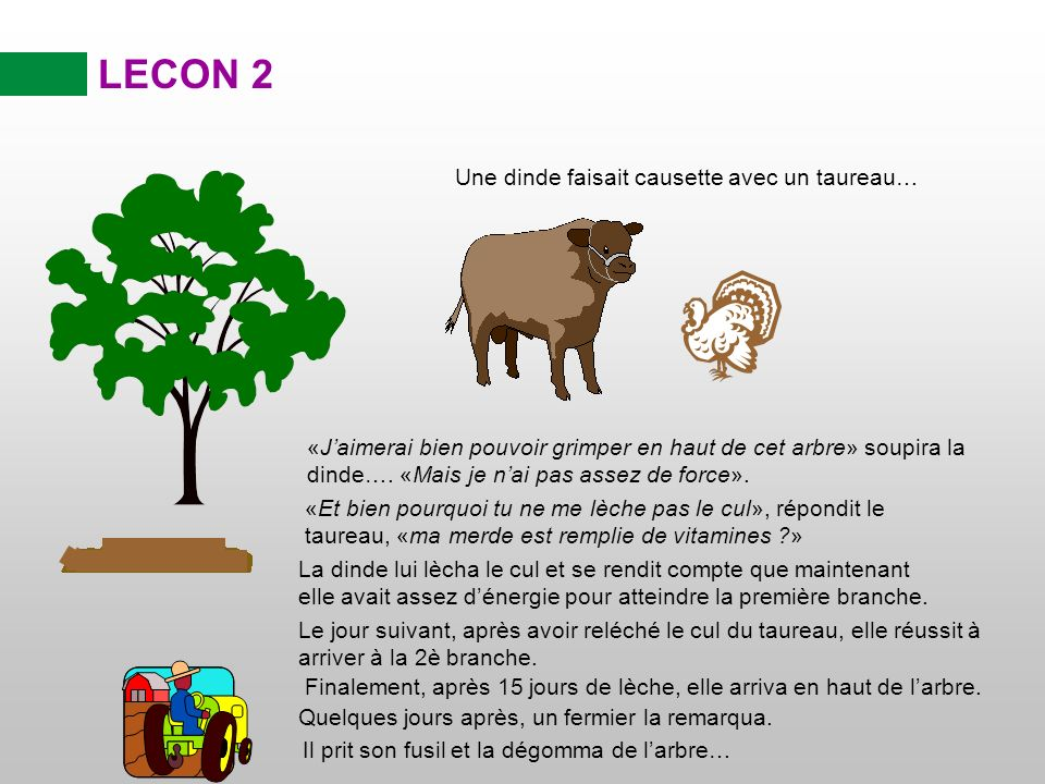 LECON 2 Une dinde faisait causette avec un taureau…