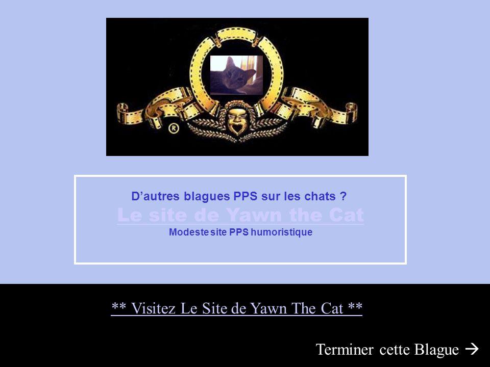 Modeste site PPS humoristique