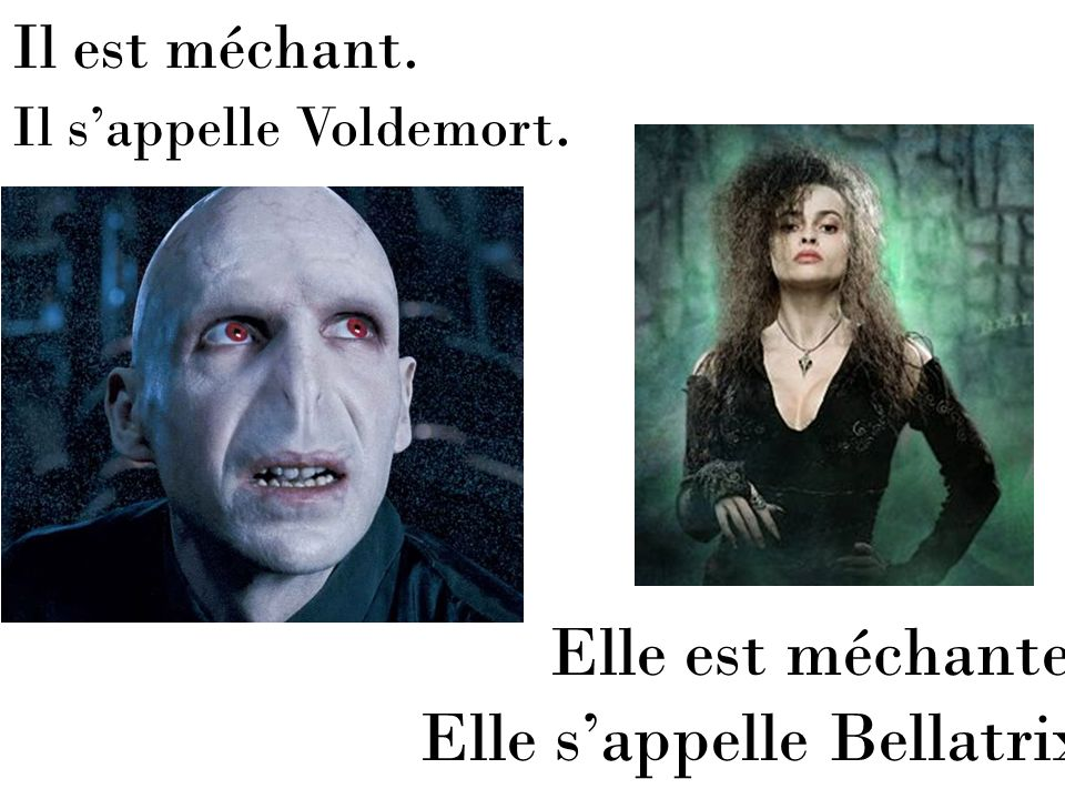 Elle s'appelle Bellatrix