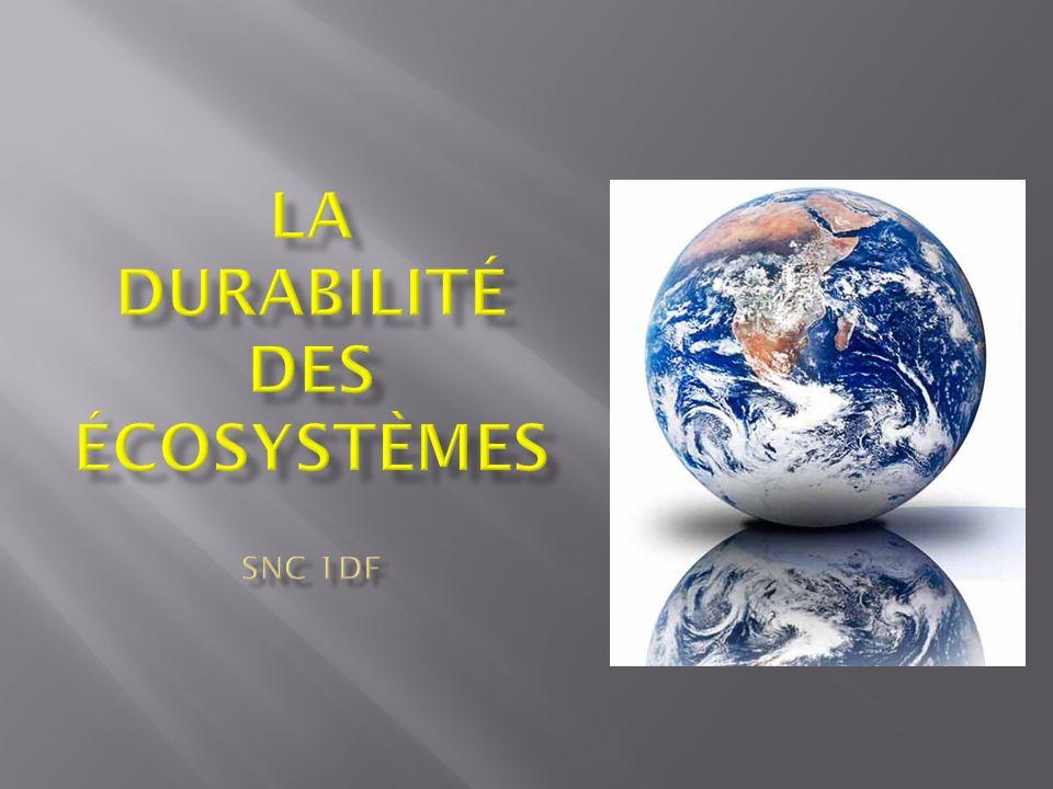 La durabilité des écosystèmes SNC 1DF
