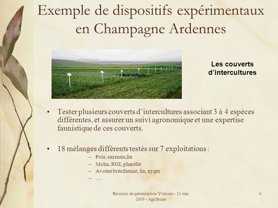 Exemple de dispositifs expérimentaux en Champagne Ardennes