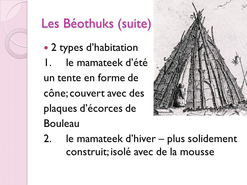 Les Béothuks (suite) 2 types d'habitation 1. le mamateek d'été