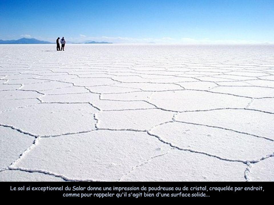 Le sol si exceptionnel du Salar donne une impression de poudreuse ou de cristal, craquelée par endroit, comme pour rappeler qu il s agit bien d une surface solide...