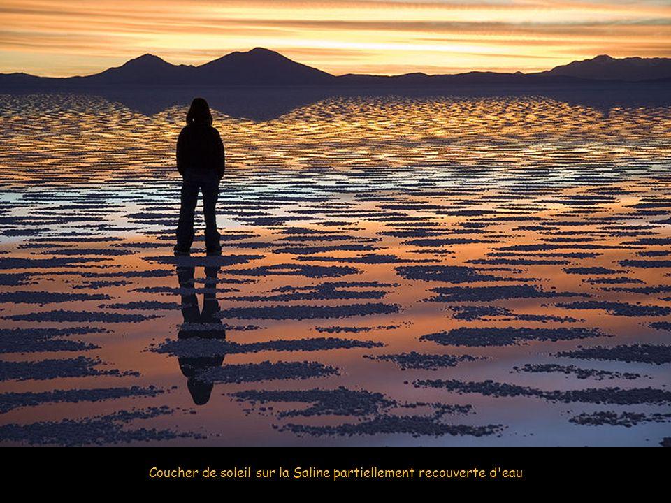 Coucher de soleil sur la Saline partiellement recouverte d eau